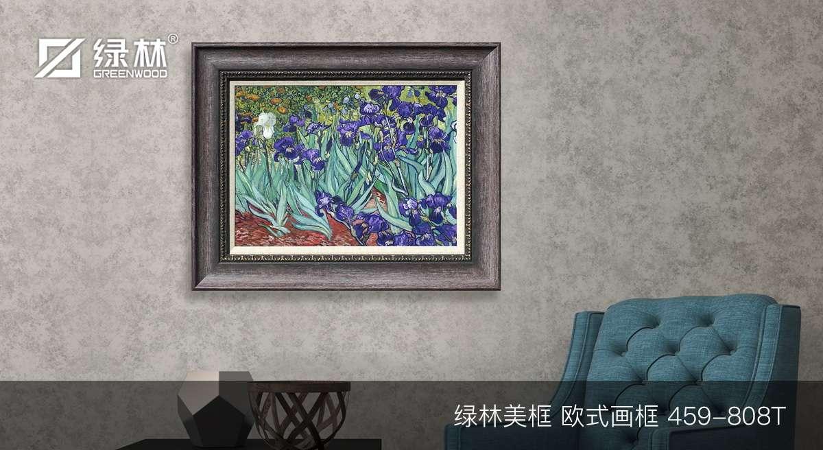 绿林PS画框线条459-808T应用为欧式画框的墙面装饰效果图