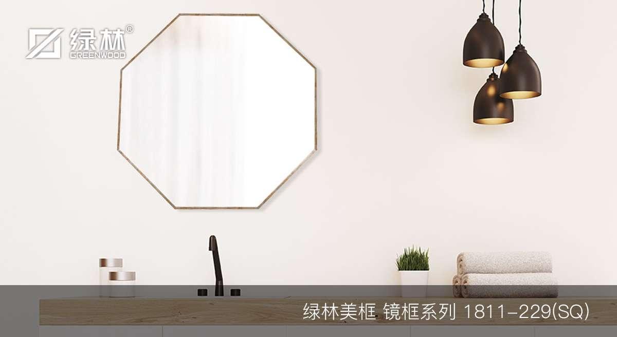 绿林PS镜框线条1811-229(SQ)应用于室内穿衣镜浴室镜效果图