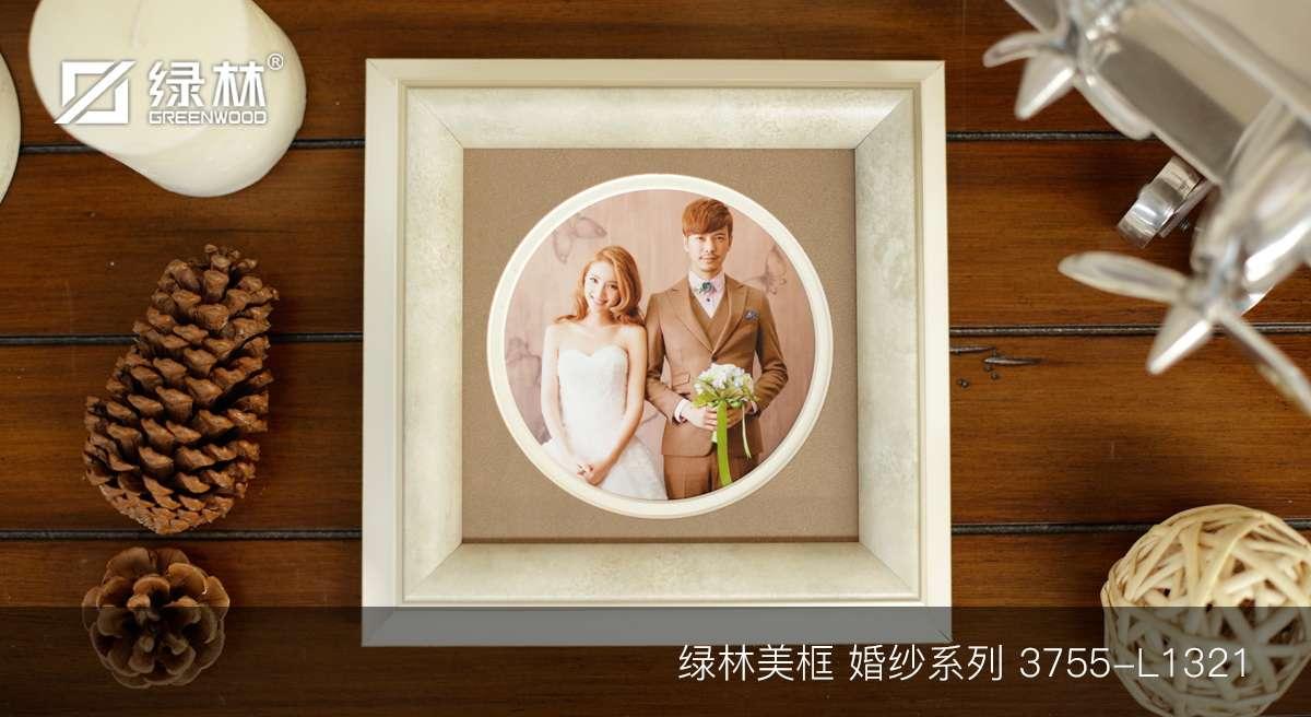 绿林婚纱PS相框线条3755-L1321应用于成品婚纱相框效果图
