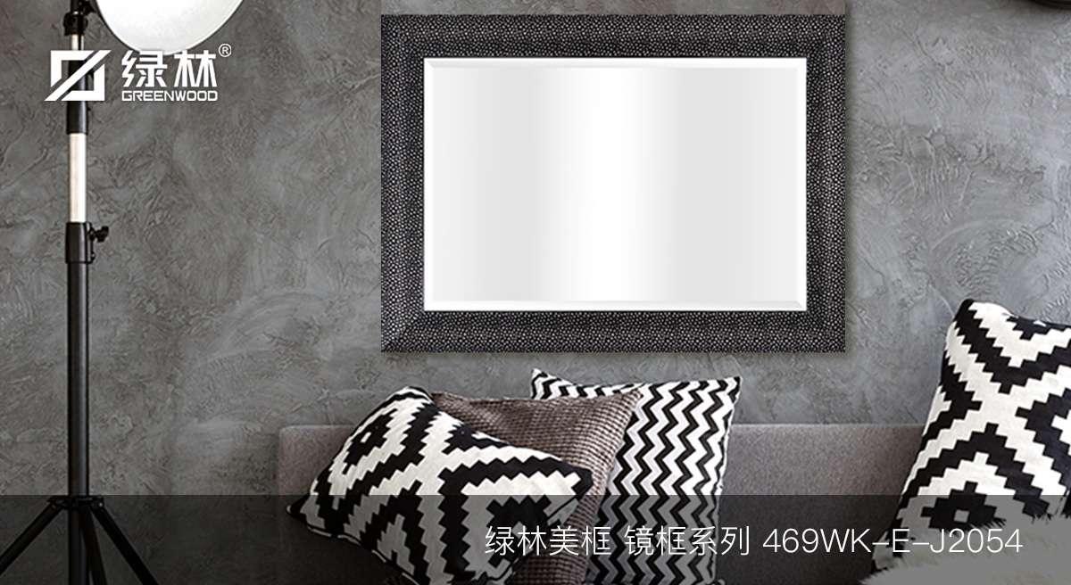 绿林PS镜框线条469WK-E-J2054应用为室内装饰镜效果图