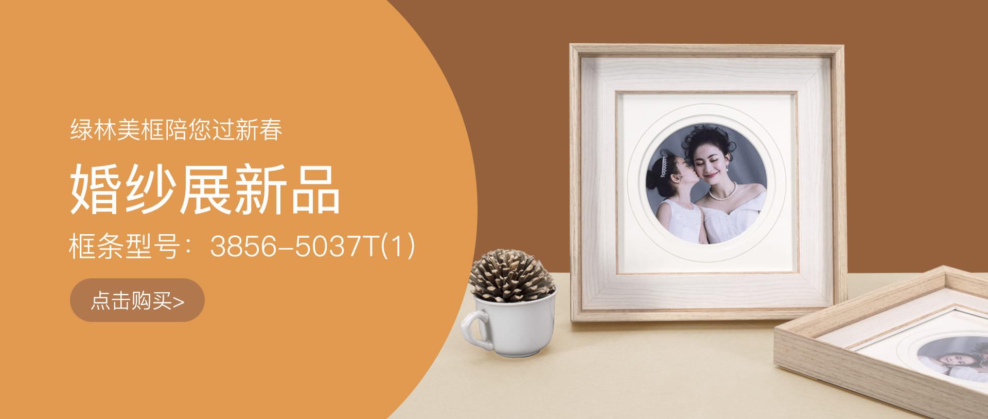 绿林新款婚纱PS相框线条3856-5037T在线购买banner