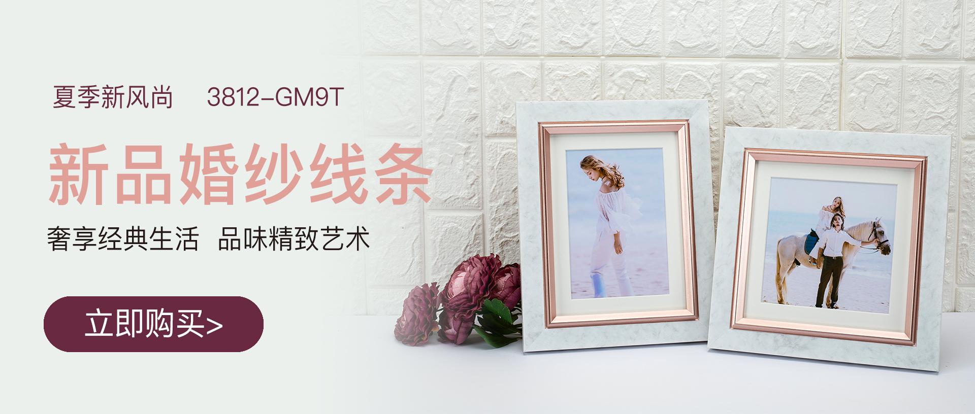 绿林3812-GM9T新品婚纱相框线条banner